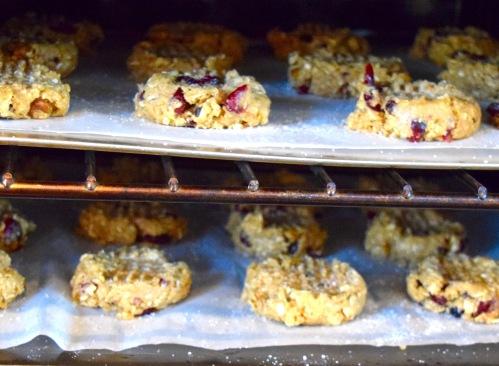 sorghum cookies – Version 2