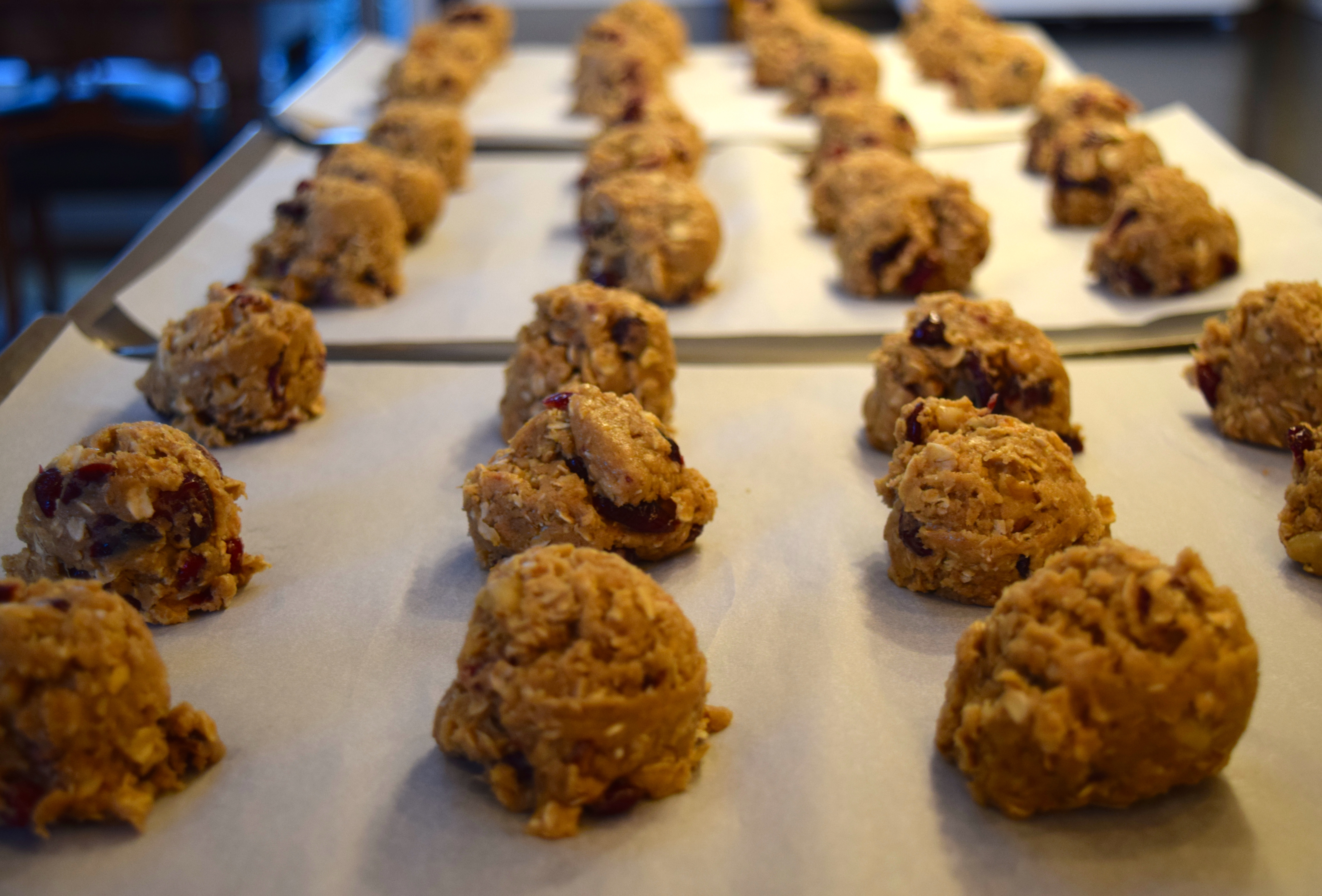 Oats, Sorghum, Ginger and Cranberry Cookies@judyschickens