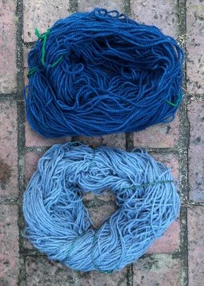 How to Make Indigo Blue Dye@judyschickens